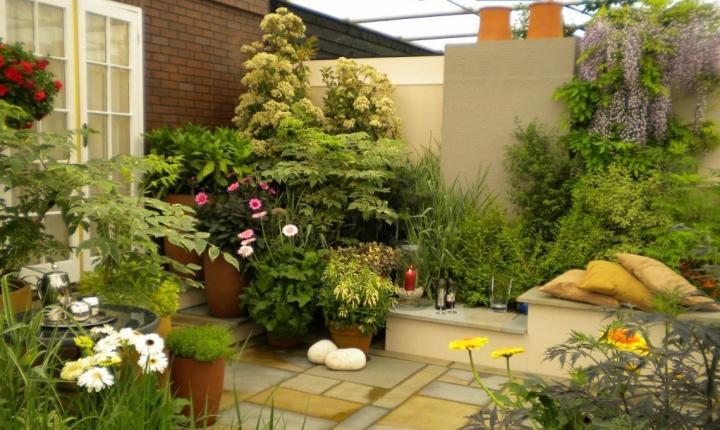Diseño de jardín tropical