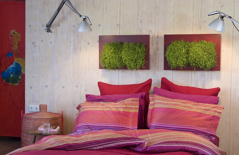 Wallflower cuadros vegetales decoraci n del hogar - Cuadros para dormitorios rusticos ...