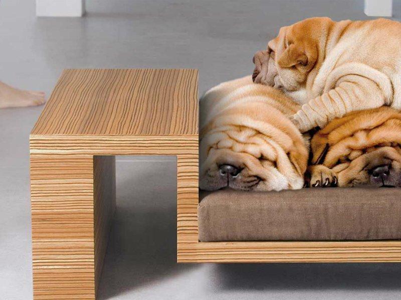 camas de dise o para mascotas decoraci n del hogar
