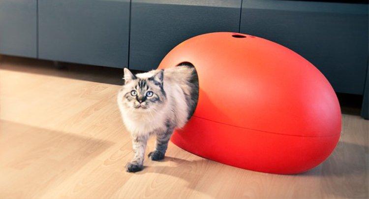 Camas para gatos poo poo pee do decoraci n del hogar for Cama para gatos