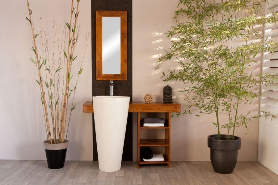 Cuartos de ba o feng shui decoraci n del hogar for Plantas para interiores feng shui