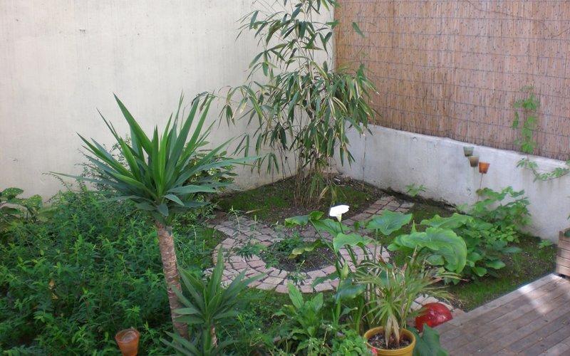 Crea un jard n en tu terraza decoraci n del hogar - Plantas para terraza con mucho sol ...