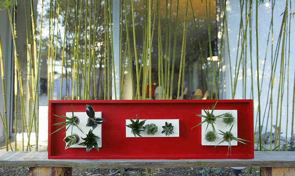 Flowerbox decorar con flores y plantas decoraci n del hogar - Decoracion de plantas ...