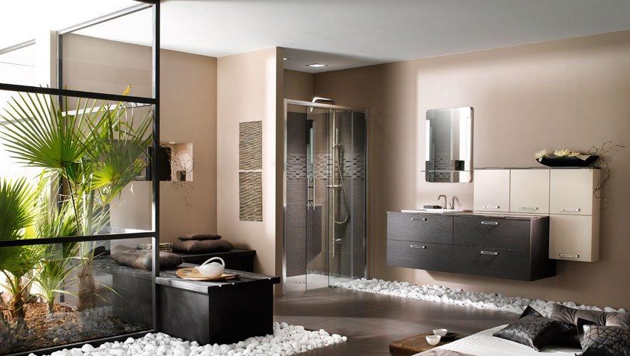 Decorar el cuarto de baño con plantas. Decoración del hogar.