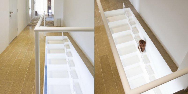 Escalera especial para perros decoraci n del hogar - Escaleras para perros ...