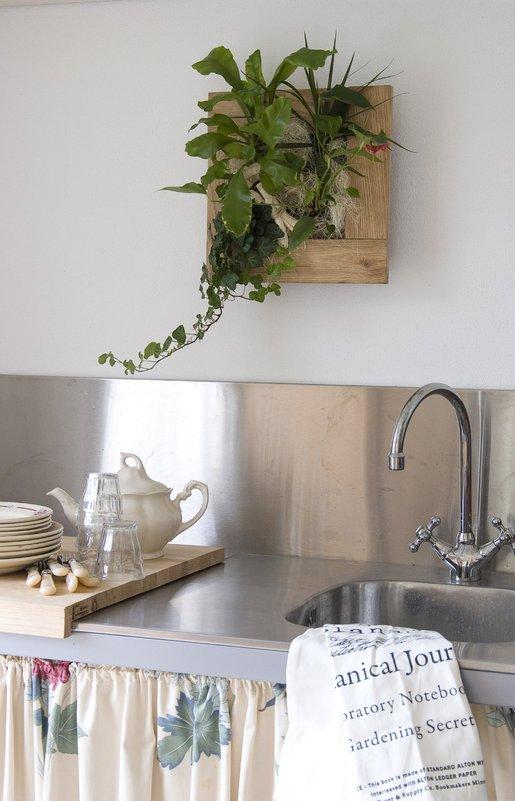Wallflower cuadros vegetales decoraci n del hogar for Cuadros decoracion hogar