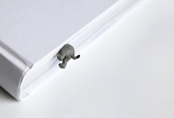 Accesorios para los apasionados de los elefantes (3)