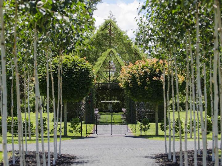 Iglesia floral en Nueva Zelanda (4)